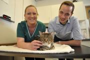 Shady the cat with from left, Emma Green, RVN and Luke Ainsworth, Veterinary Surgeon at Walker Green Veterinary Surgery where Shady had the pacemaker fitted