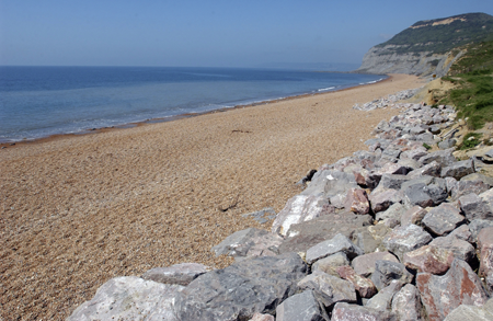 Dorset Beaches: Seatown